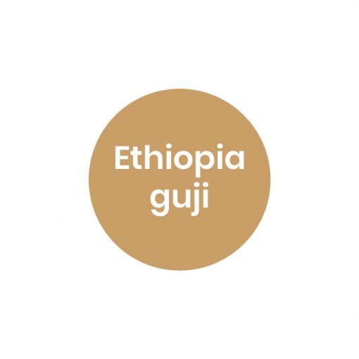 قهوه اتیوپی گوجی کارخانه قهوه پروشات